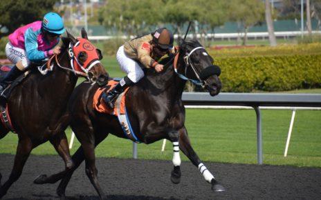 horseracing 5061006 1280