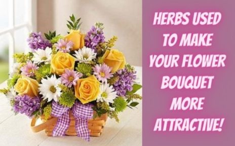 8 Herbs Used To Make Your Flower Bouquet More Attractive-