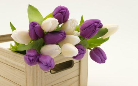 bouquet 3158358 1280